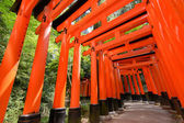 Thousands of Torii with green trees — Stock Photo