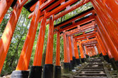Thousands of Torii with stone steps — Stock Photo