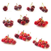 Collection of Cherries isolated on white — Stock Photo