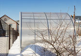 A small greenhouse is made of polycarbonate winter — Stock Photo