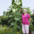 Cottager near a huge sunflower — Stock Photo