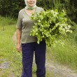 Stock Photo: Mature beautiful womwith birch brooms