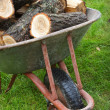 An old wheelbarrow full of firewood — Stock Photo