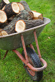 An old wheelbarrow full of firewood — Stock Photo