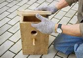 Making  birdhouse — Stock Photo