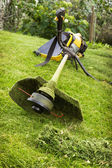 Petrol trimmer on the sloped lawn — Stock Photo
