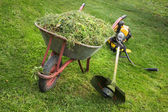 Wheelbarrow with grass and the trimmer — Stock Photo