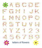 Letters of flowers — Stock Photo