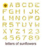 Litery słoneczniki — Zdjęcie stockowe