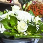 Flowers white — Stock Photo #13299848