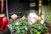 Little roses — Stock Photo
