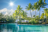 Palm tree and pool — Stock Photo