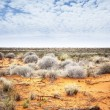 Stock Photo: Outback