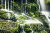 Tasmanian Waterfall — Stock Photo