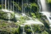 Tasmanian Waterfall — Stock Photo