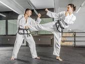 Maestro de artes marciales — Foto de Stock