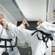 Martial arts master — Stock Photo
