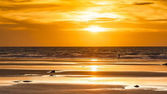 Broome Australia — Stock Photo