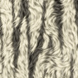 Royalty-Free Stock Photo: Fur background