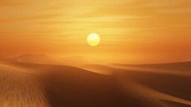 Desert sunset — Stock Video