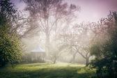 Pavilhão no jardim — Foto Stock