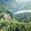 Castle Hohenschwangau — Stock Photo #26559885