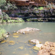 Dales Gorge Australia — Stock Photo