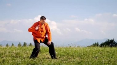 A man doing Qi-Gong in the green nature — Stock Video