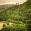 Tuscany Landscape — Stock Photo #31993247
