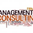 Stock Vector: Management consulting text cloud
