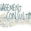 Management consulting text cloud — 图库矢量图片