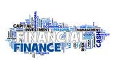 Financial text cloud — Stock Vector