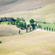 Stock Photo: Pienza Landscape