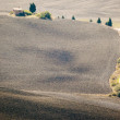 Pienza Landscape — Stock Photo #35795481