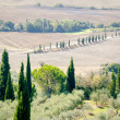Pienza Landscape — Stock Photo
