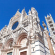 Cathedral in Siena — Stock Photo