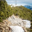 herzogstand in the alps of bavaria germany — Stock Photo #38471067