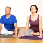 Yoga Exercise — Stock Photo #40272967