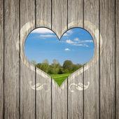 деревянные сердце природы — Стоковое фото