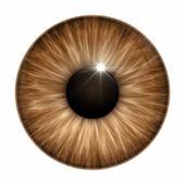 Brown eye texture — Stock Photo