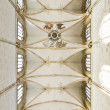 Church Ulm — Stock Photo #9707139