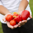 Vegetables in hands — Stock Photo #30086229