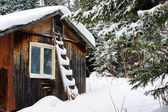 Old wood cabin covered by snow — Stock Photo