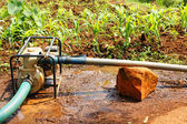 Water pump in the field during dry season — Stock Photo