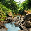 Water creak in tropical forest — Stock Photo