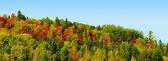 Panorama of mountain during fall — Stock Photo