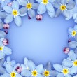 Stock Photo: Blue flower frame