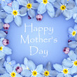 Blue flower mothers day card — Stock Photo
