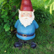 Stock Photo: Garden gnome looking at camera