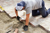 Laying down paver — Stock Photo